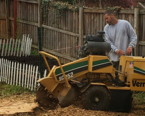 JC Tree Care Stump Removal Fort valley
