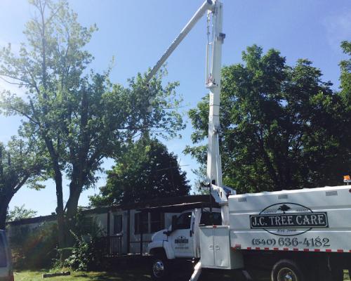 JC Tree Care Tree Removing Equipment
