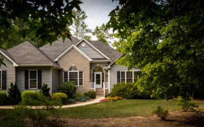 5 Things to Look for When Hiring a Tree Removal Service